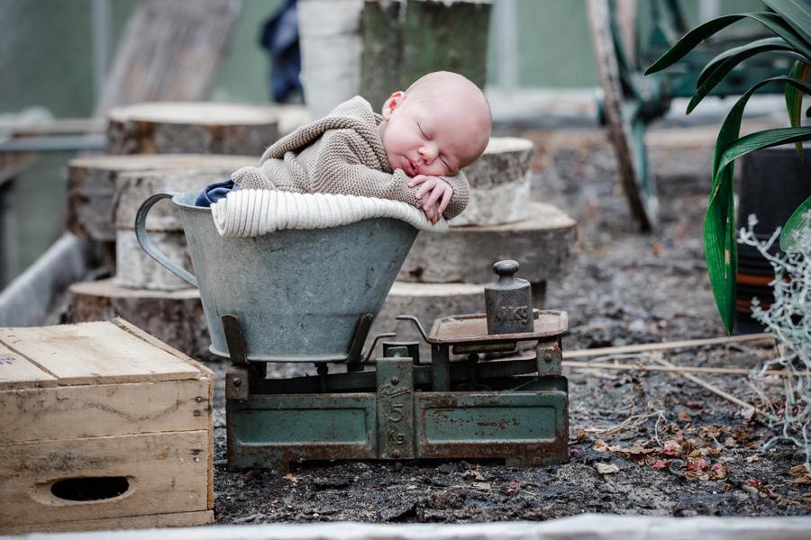 Neugeborenenfotos in Hamburg, Reinbek, Glinde, Geesthacht