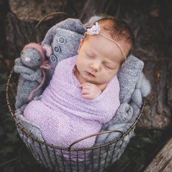 Neugeborenenfotos, Babyfotos,